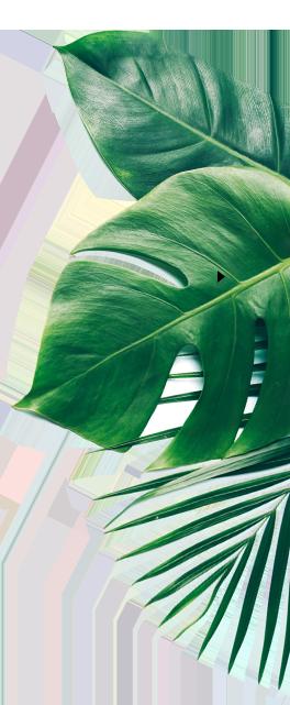 honoer leaf1